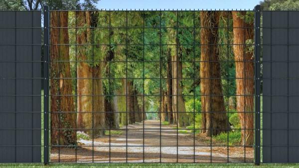 Sichtschutz für Doppelstabmatten Alee Waldweg bewachsen zaunblick zlwa002 A