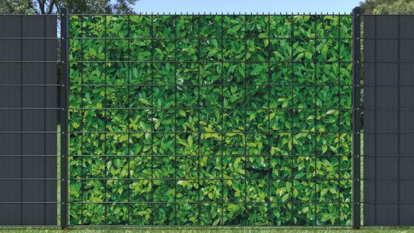 Sichtschutzzaun Hecke Blätterwand hellgrün Blätter oval zaunblick ztp008 A
