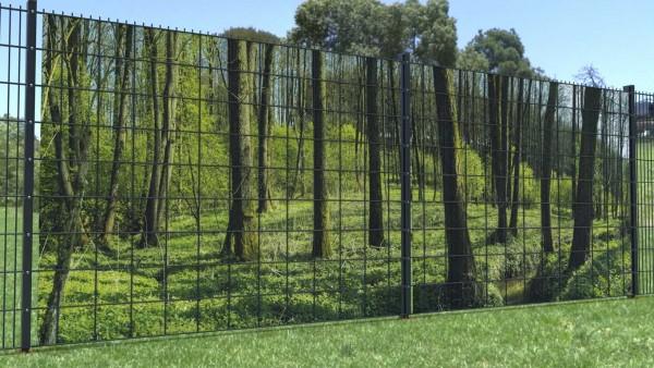 Sichtschutz für Gittermattenzaun Waldstück Moosboden zaunblick zp011 A